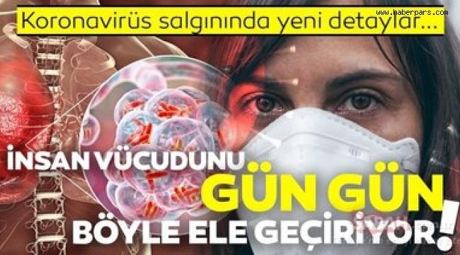 Covit Virüsü Vücuda Nasıl Giriyor, En Anlaşılabilir Anlatım.