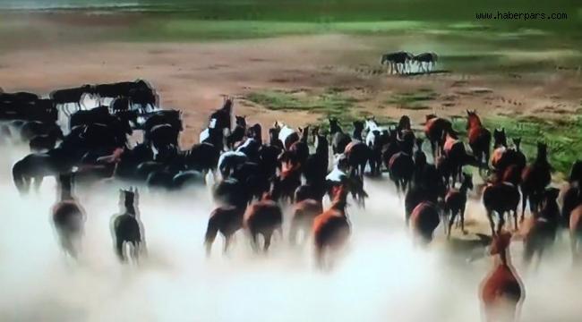 At Üstünde Yaşayan Türk'ler.